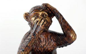 silent monkey