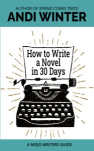 """""""How to Write a Novel in 30 Days"""" cover"""
